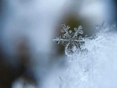 Przeprowadzka w okresie jesienno-zimowym - detail image